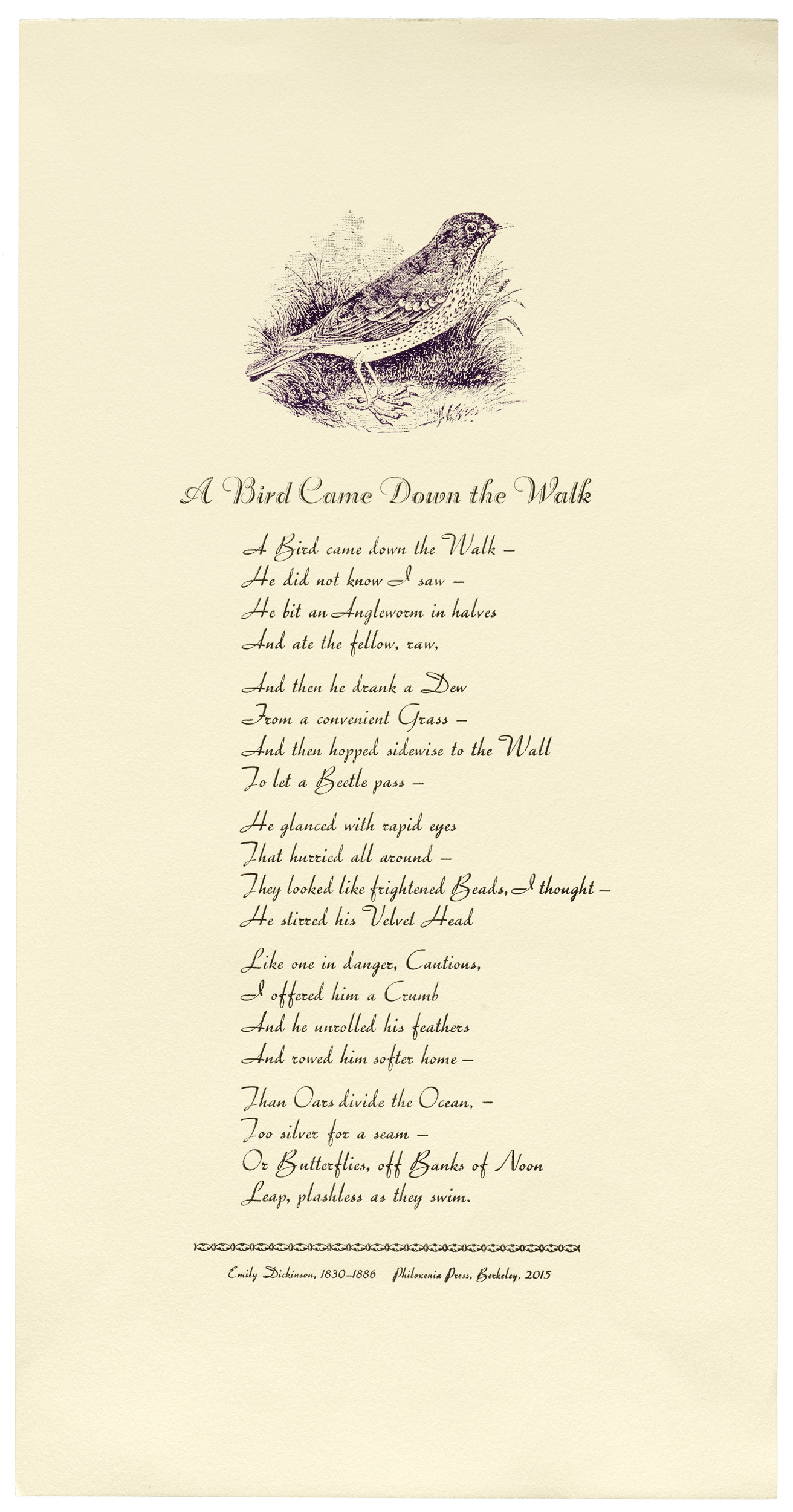 Broadside. Emily Dickinson. A Bird came down the Walk. 24 point Trafton Script & 36 point Donatello Éclair, with an engraving by Thomas Bewick. Size 8.5 x 17.